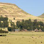 ETIOPIJA I ERITREJA NA PRAGU VELIKOG RATNOG SUKOBA